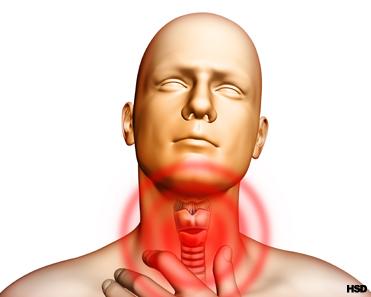 Thyroid and Gluten